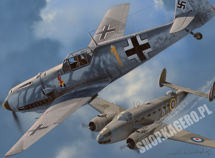 Messerschmitt Bf 109 T the Luftwaffe's Naval Fighter